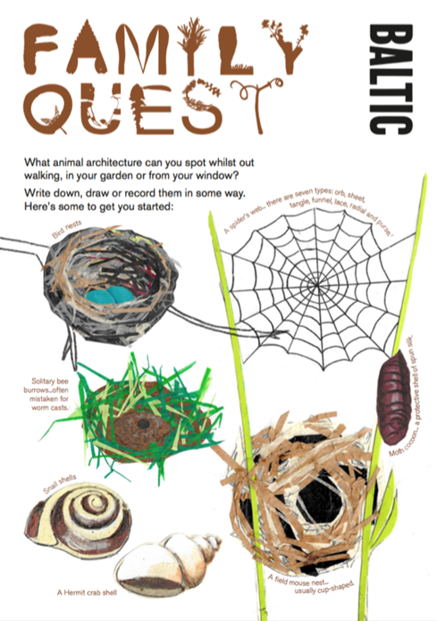 BALTIC Family Quest Activity Guide: What Animal Architecture Can You Spot?