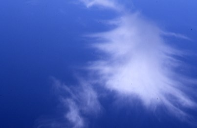 Alec Finlay: Participations: Wind Blown Cloud Archive: Slide (07)
