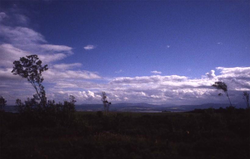 Alec Finlay: Participations: Wind Blown Cloud Archive: Slide (09)