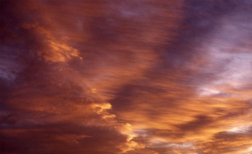 Alec Finlay: Participations: Wind Blown Cloud Archive: Slide (17)
