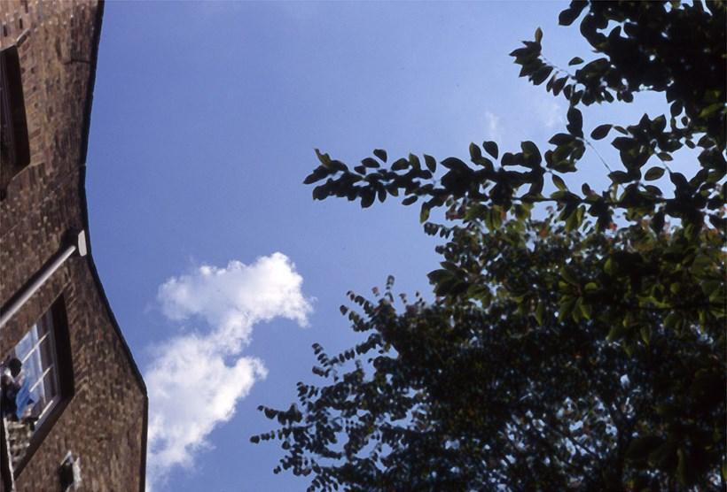 Alec Finlay: Participations: Wind Blown Cloud Archive: Slide (44)