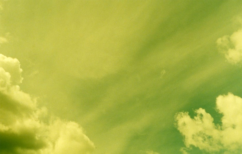 Alec Finlay: Participations: Wind Blown Cloud Archive: Slide (46)