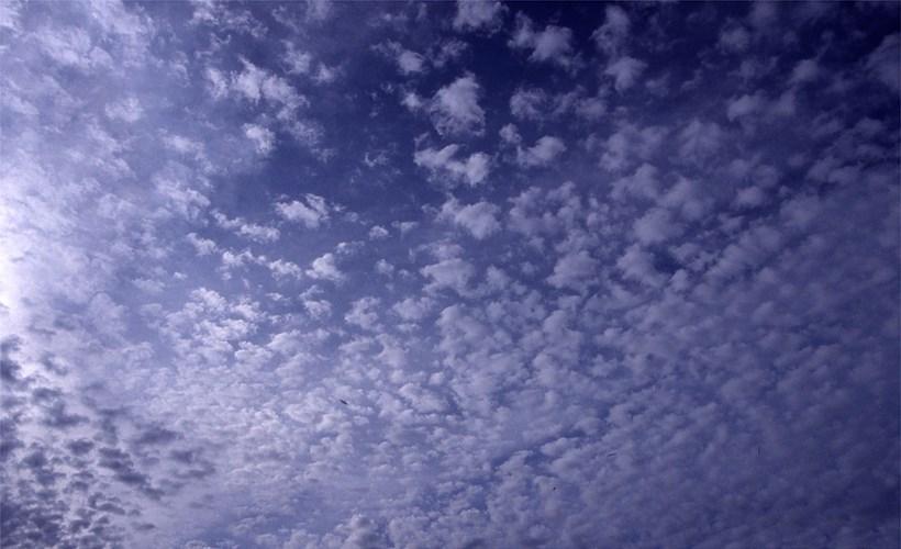Alec Finlay: Participations: Wind Blown Cloud Archive: Slide (56)