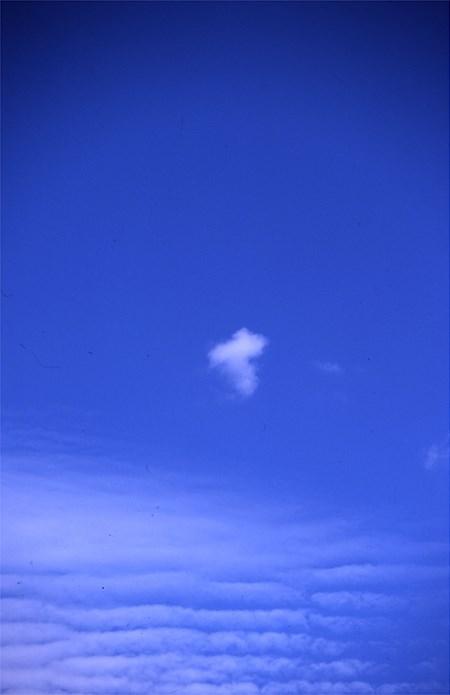 Alec Finlay: Participations: Wind Blown Cloud Archive: Slide (73)