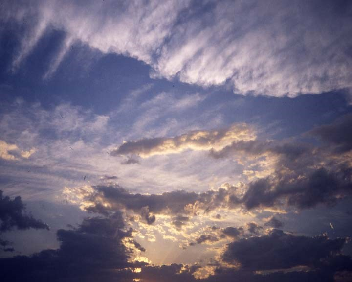 Alec Finlay: Participations: Wind Blown Cloud Archive: Slide (77)