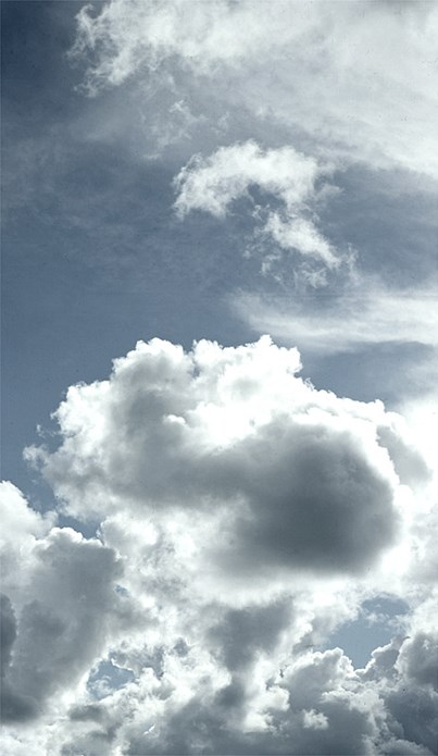 Alec Finlay: Participations: Wind Blown Cloud Archive: Slide (79)