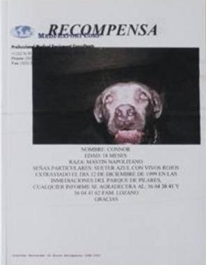 Jonathan Hernandez : Se Busca Recompensa 1998-2001