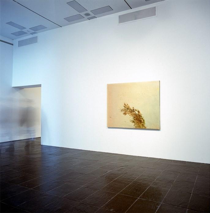 Elizabeth Magill: Recent Paintings: Exhibition Images (02)
